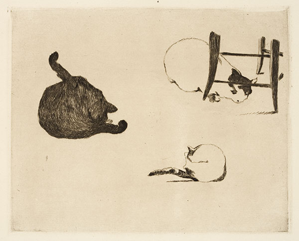 Edouard Manet; The Cats