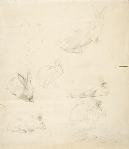 Rosa Bonheur, Sketches of Rabbits