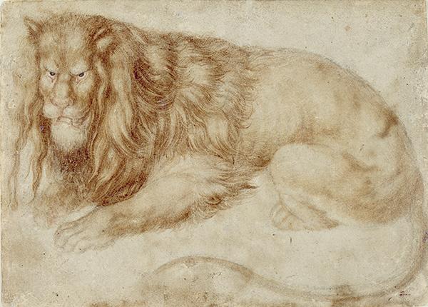 Albrecht D�rer, Recumbent Lion