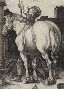 Albrecht D�rer, The Large Horse