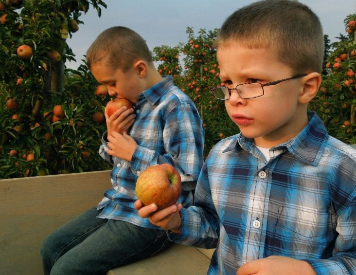 Cody's sons eating apples
