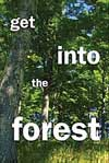 get into the forest