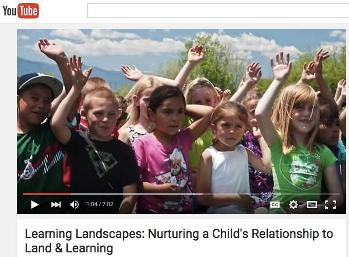 Learning Landscapes video on YouTube
