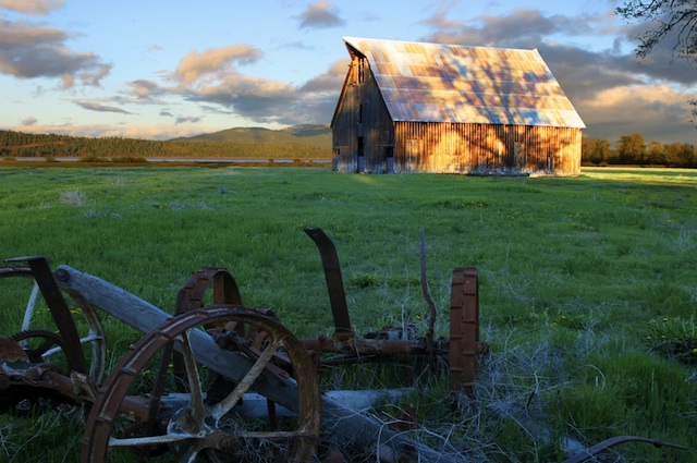 Olsen Barn in Meadow