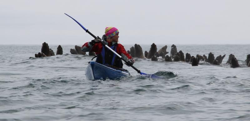 Kayaking in Kamchatka Tour