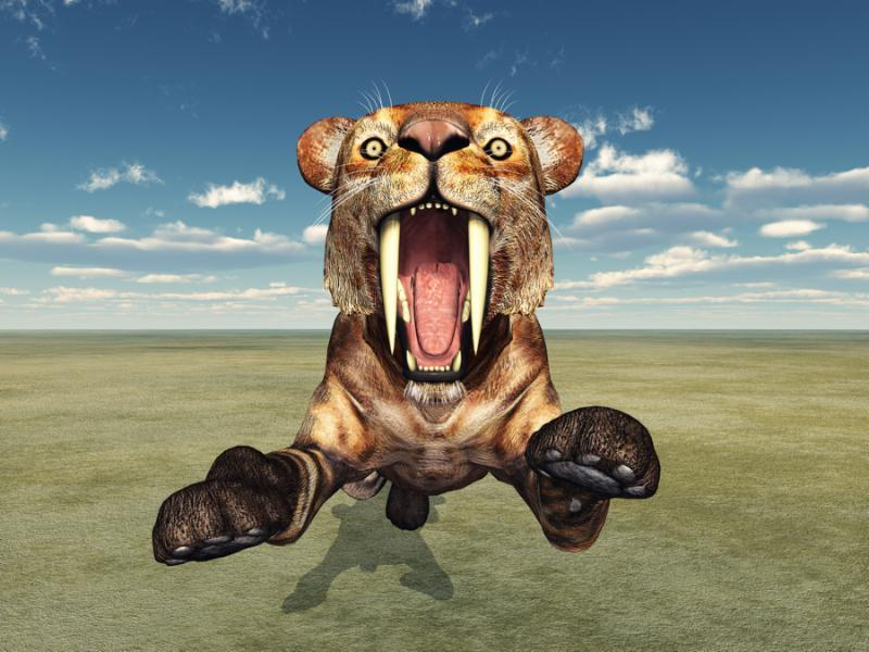 Computer generated 3D illustration with the Smilodon