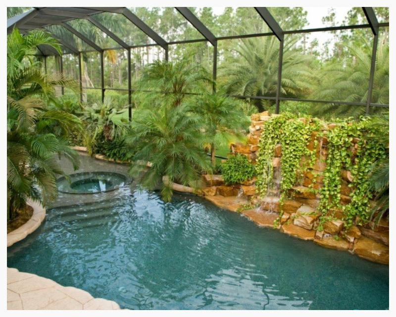 Tropical Paradise in Your Back Yard