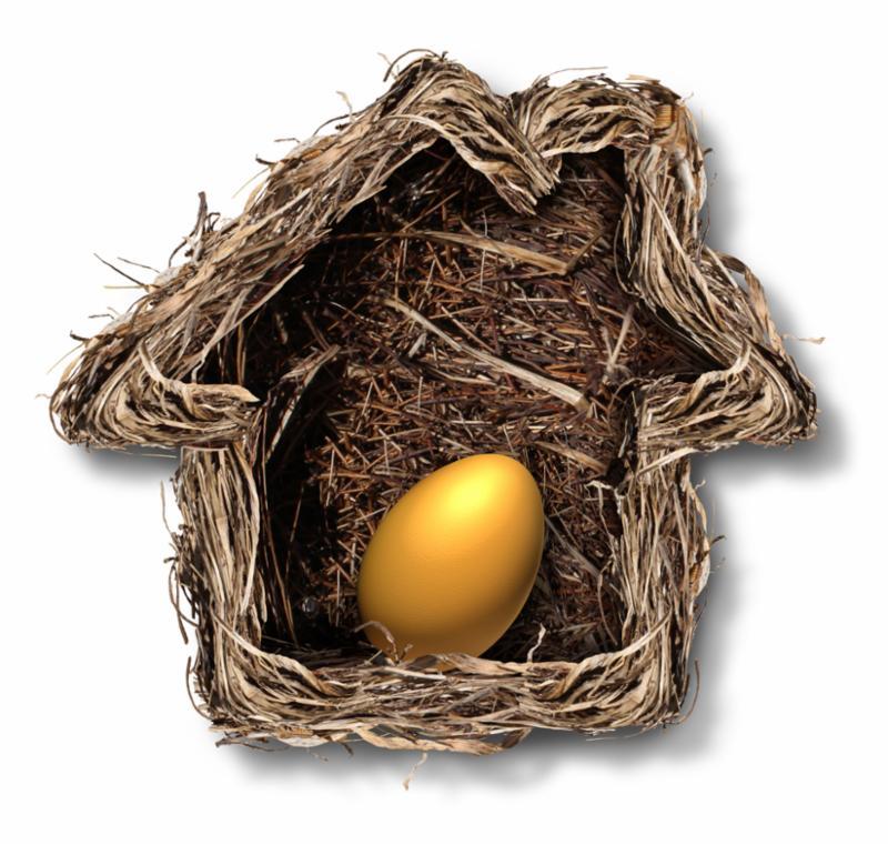 home_finances_egg.jpg
