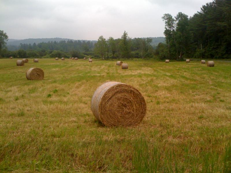 Gould Farm hay bale