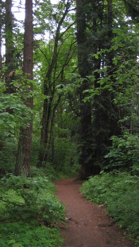 PB trail from Friends