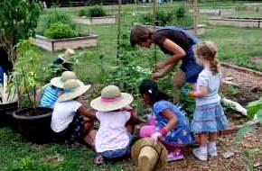 kids in garden, farmtoschoolnetwork