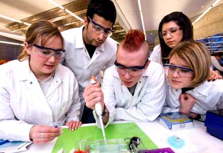 student researchers, bayer.com