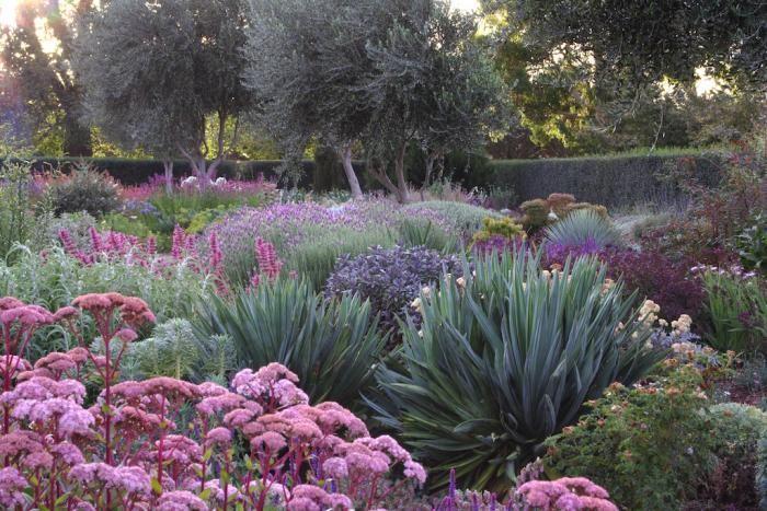 Lambley Nursery in Melbourne, Australia. Photo by Gardenista