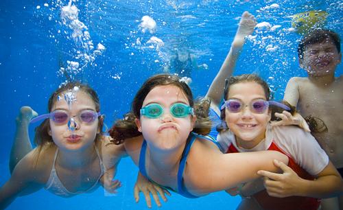Aquatic Calender Click Here To View