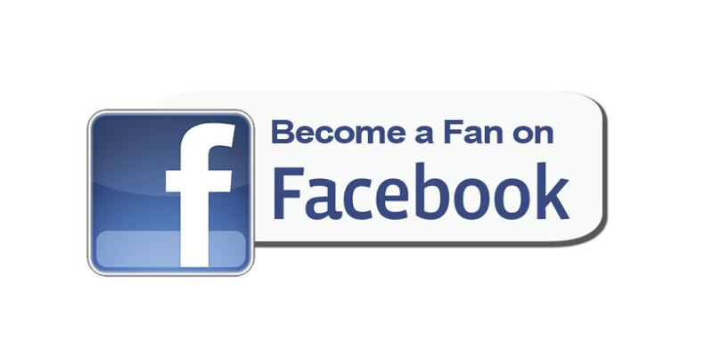 Facebook become a fan button