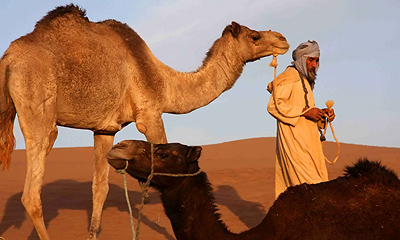 Dunes of Chegaga trekking in Morocco
