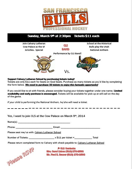 Bulls Hockey Flyer Updated