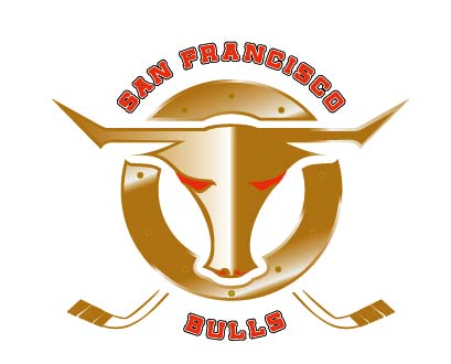 SF Bulls Hockey