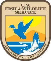 U.S. Fish and Wildlife