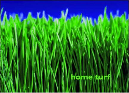SU Home Turf