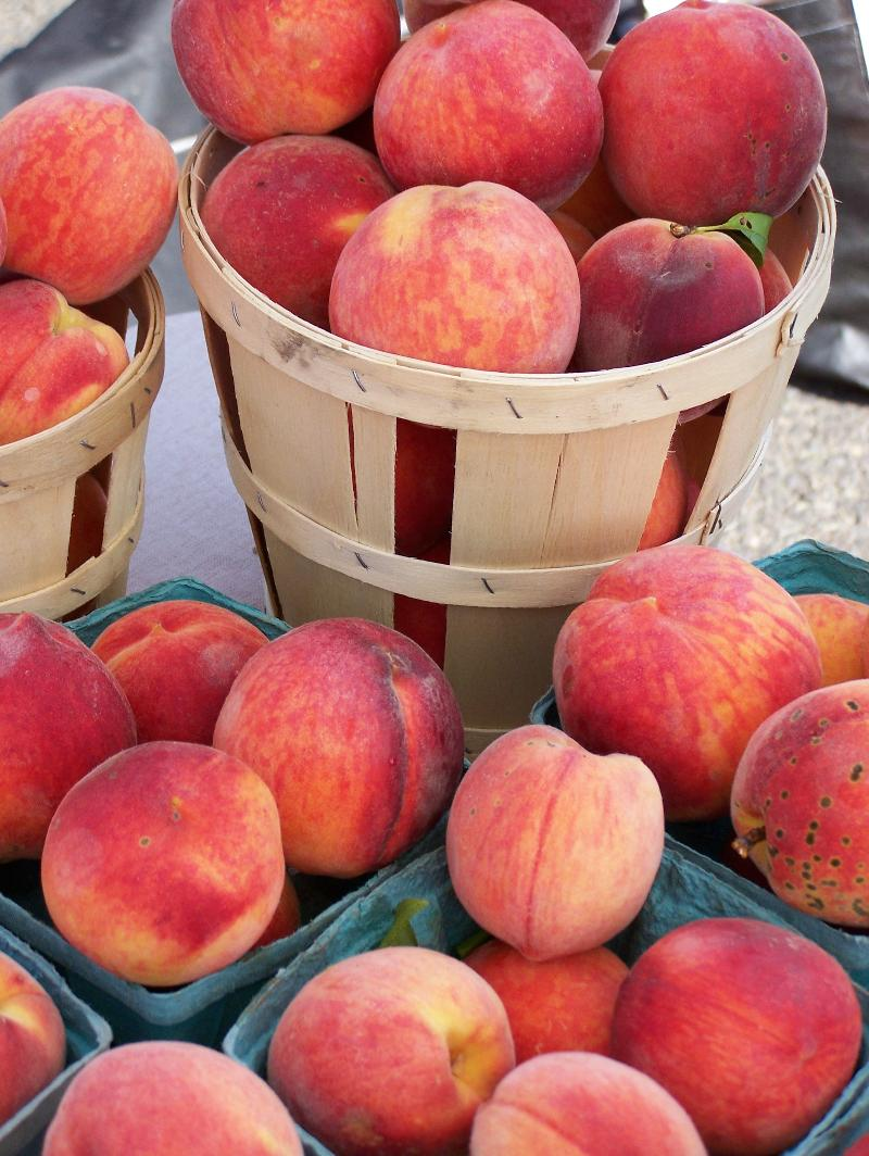 Peaches from Tall Pines Farm, Rushland, PA