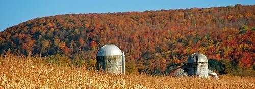 Fall in Finger Lakes