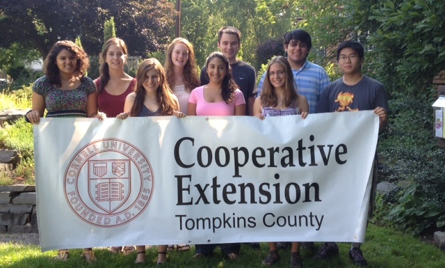 Summer Energy Corps