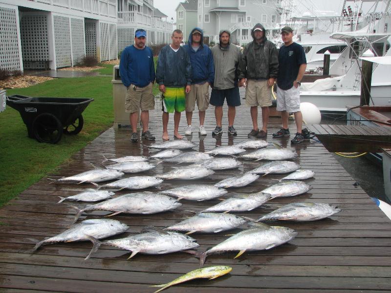 Fall tuna