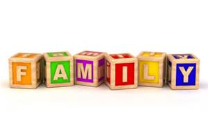 children_s blocks that spell out the word family
