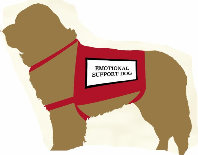 drawing of a dog wearing an emotional support vest