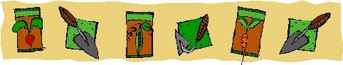 seedpkatborderclipart