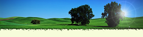 green-field-header.jpg