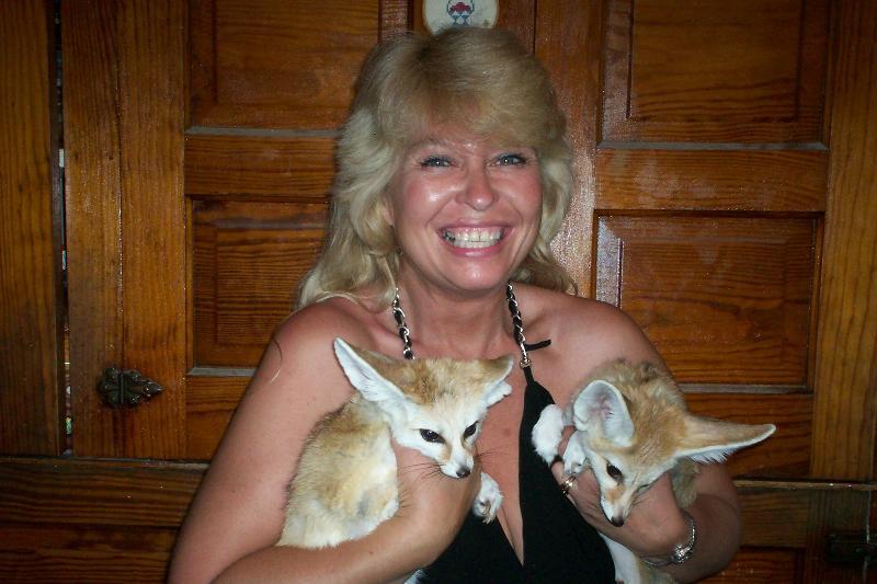 me n foxes