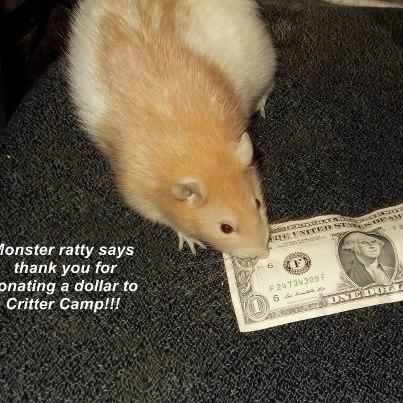 monster dollar