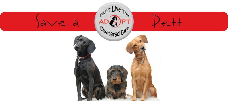 Save a Pett