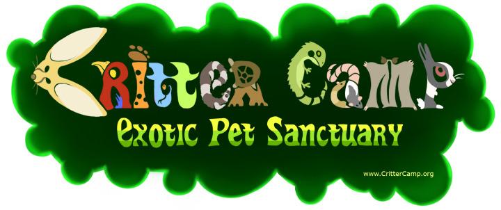 Logo best