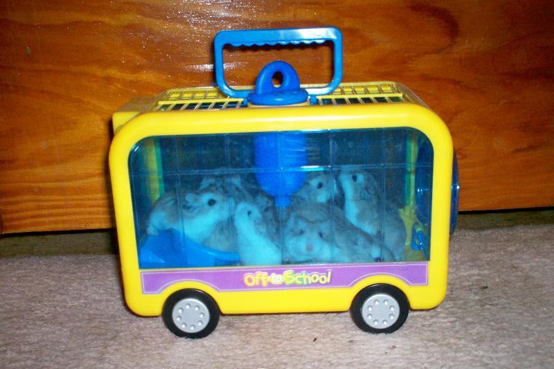 hamster field trip