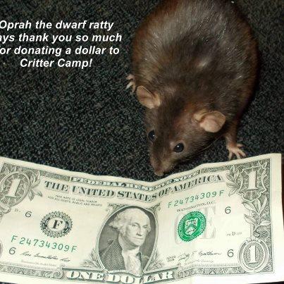 oprah dollar