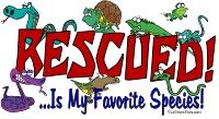 recued reptile t
