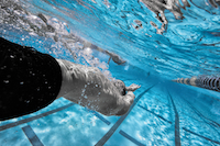 backstroke, streamline, swimming, swimmer