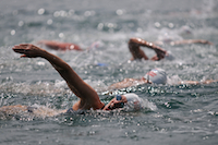 open water, 4 swimmers