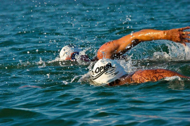 Open Water, swimming, swimmers, race, 1v1, Tropical Splash