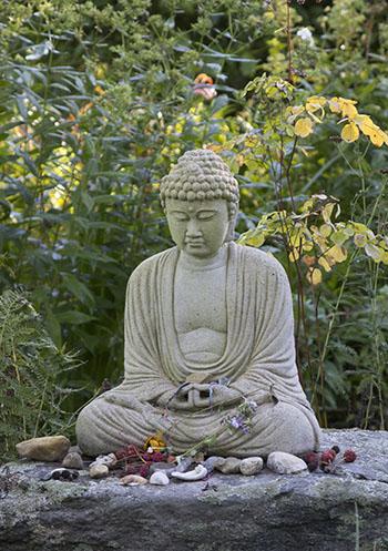 RC Buddha