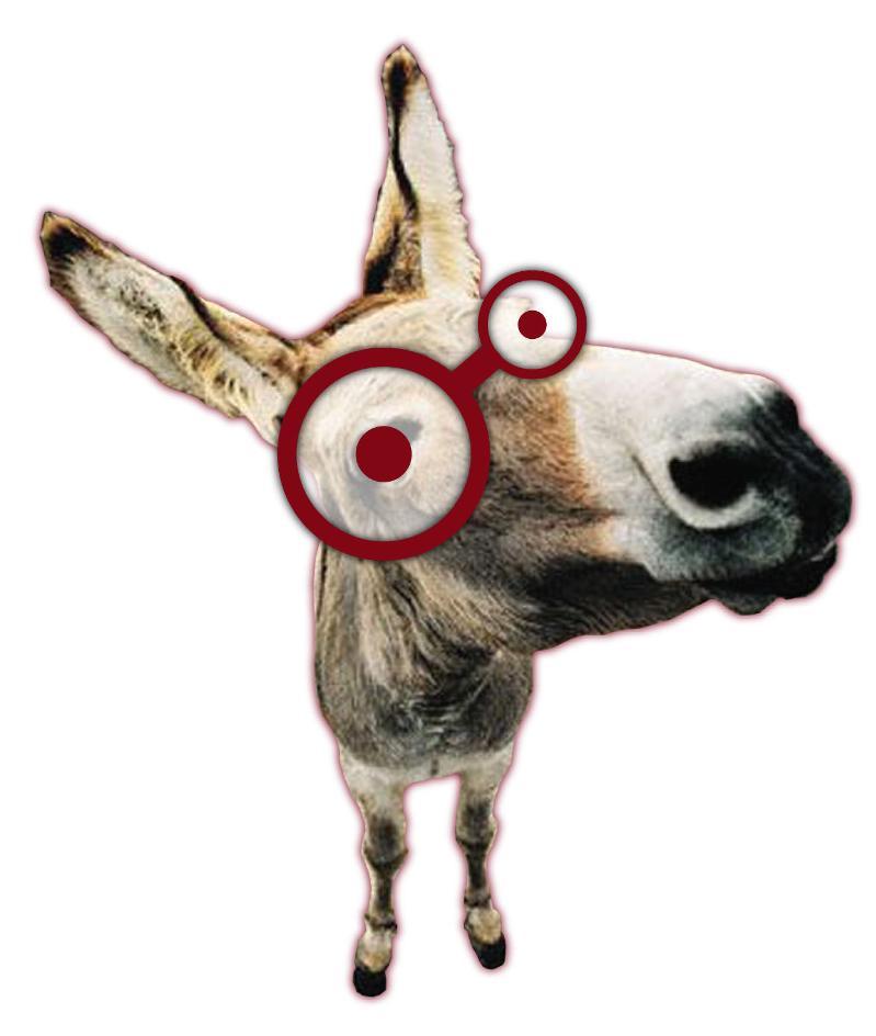 SH Donkey