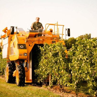 SH Harvest