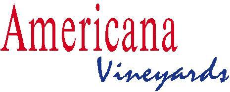 Amer. Logo