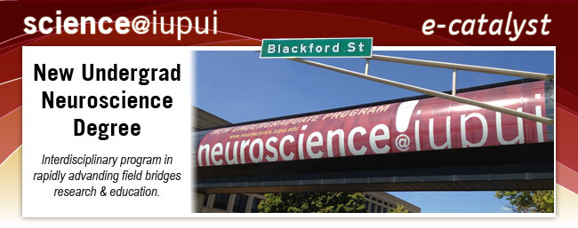 Science Newsletter Aug 2012: New Undergrad Program in Neuroscience