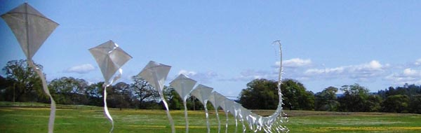 The kite before ascending.