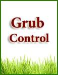 Grub Control Services