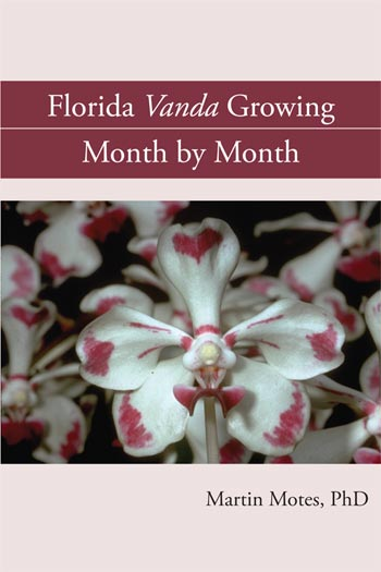 Florida Vanda Growing Month by Month